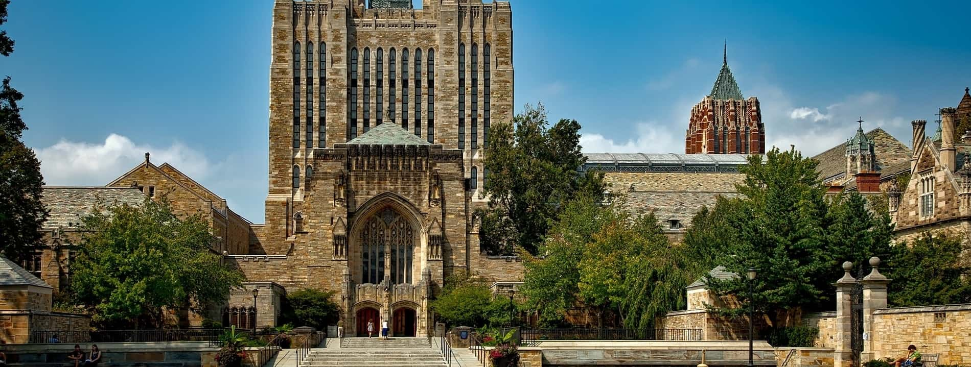 university ivy league schools