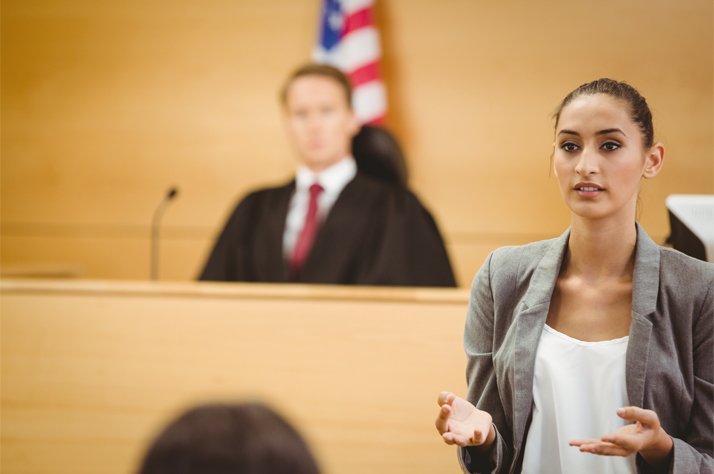 The Role of Court Cases and Appellate Decisions